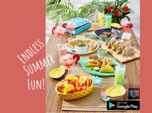Endless Summer Fun