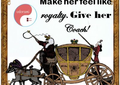 Christmas Bonus Wish List~ Coach Lady